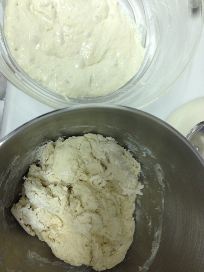 Bread dough is reading for the starter to be added.