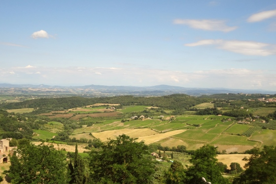 View from Montepulicano